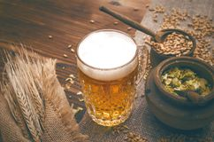 Hop and malt. Beer ingredients. Cold foam beer with malt grain, green hop leaves in the pots and rye ears on burlap cloth on brown wooden table background royalty free stock image