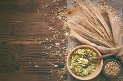 Hop and malt. Beer ingredients. Malt and hop in wooden pots and rye ears on burlap cloth on brown wooden table background with copy space royalty free stock photography