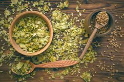 Hop and malt. Beer ingredients. Hop and malt in wooden pots on brown brewery table background. Top view royalty free stock photos