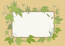 Hop omringd frame Royalty-vrije Stock Afbeeldingen