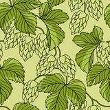 Hop Ornament On Green Grunge Background, Vector Stock Photo