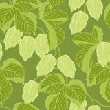 Hop Ornament On Green Grunge Background, Vector Royalty Free Stock Photos