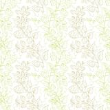 Hop seamless pattern. Stock Photos