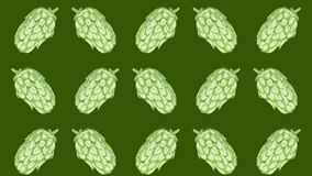 Hop sprout pattern, ideal footage for themes such as craft beers, natural products and alcoholic beverages