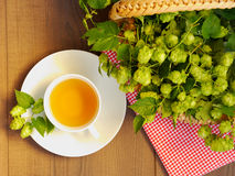 Hop tea - top view Royalty Free Stock Photos