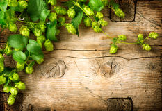 Hop twig over old wooden table background. Vintage style. Beer production. Brewery Royalty Free Stock Image
