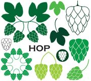 Hop. Vector illustration (EPS 10 Royalty Free Stock Images