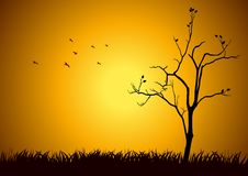 Hope. Stock illustration of a tree silhouette Stock Images