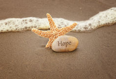 Hope. Calming image of hope. Starfish and a rock by the ocean waves Royalty Free Stock Photography