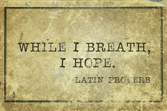 Hope breath Proverb. While I breath, I hope - ancient Latin proverb printed on grunge vintage cardboard royalty free stock photography