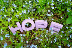 HOPE and Forget-Me-Nots. Hand-painted (light violet) HOPE word surrounded by forget-me-not flowers in a garden setting. Concept image for finding solutions for royalty free stock photography