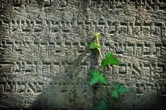 Hope jewish tomb Royalty Free Stock Image