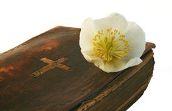 Hope in Prayer. Very old prayer book with Helleborus blossom royalty free stock images