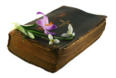 Hope in Prayer. Very old prayer book with spring flowers Royalty Free Stock Image