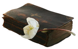 Hope in Prayer. Old prayer book and Hellebore with clipping path royalty free stock image