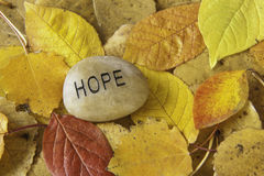 Hope Rock with Autumn Leaves Stock Photo