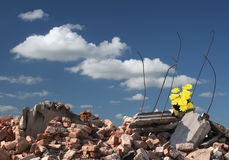 Hope on ruins. Flowers on ruins of a house Stock Photography