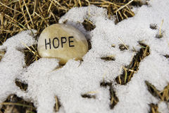 Hope for Spring Stock Image