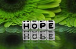 Hope text with green flowers Royalty Free Stock Photos