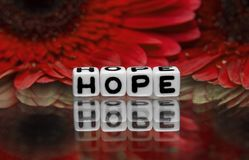 Hope text with red flowers Royalty Free Stock Photo
