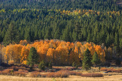 Hope Valley, Fall Color Royalty Free Stock Images
