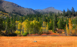 Hope Valley landscape. Near Lake Tahoe Area Stock Photography