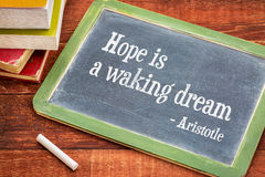 Hope is a waking dream Stock Images