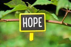 Hope word on board. Hope word written on yellow small chalkboard linked tree with clothespin on nature green background stock image