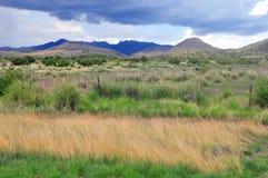 Hopen en bergen van natuurlijke schoonheid Royalty-vrije Stock Foto