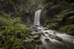 Hopetoun nedgångar i Grat Otway National parkerar fotografering för bildbyråer