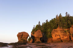 Hopewell岩石在日出的加拿大 免版税库存图片