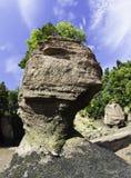 hopewell岩石 图库摄影