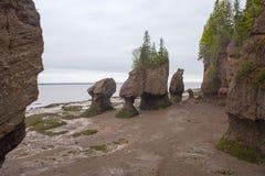Hopewell oscilla nella bassa marea, Nuovo Brunswick, Canada Immagine Stock Libera da Diritti