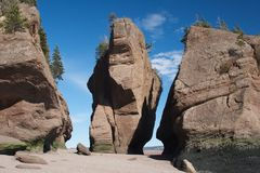 Hopewell Rocks Stock Image