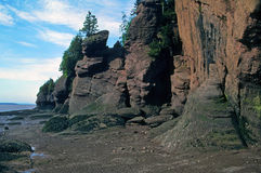 Hopewell Rocks, Bay of Fundy, Canada Stock Photography