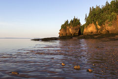 Hopewell Rocks in Canada at sunrise Royalty Free Stock Photos