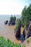 Hopewell Rocks Royalty Free Stock Images