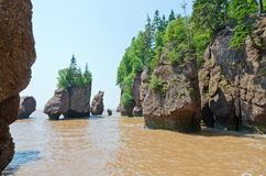 Hopewell Rocks Stock Photography