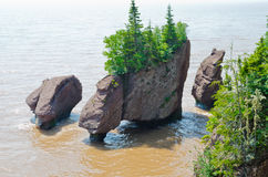 Hopewell Rocks. At high tide, New Brunswick, Canada Royalty Free Stock Photos
