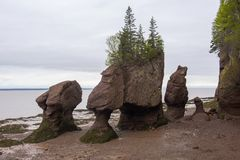 Hopewell Rocks in low tide, New Brunswick, Canada Stock Photography