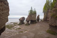 Hopewell Rocks in low tide, New Brunswick, Canada Royalty Free Stock Image