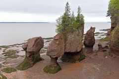 Hopewell Rocks in low tide, New Brunswick, Canada Royalty Free Stock Photos