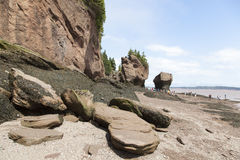 Hopewell skał plaża fotografia royalty free