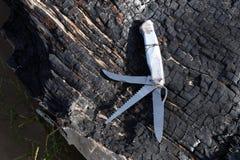 Hopfällbar kniv som kan användas till mycket med olika kanter Royaltyfri Foto