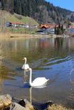 Hopfen и озеро Hopfensee стоковые изображения rf