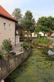 Hopfen ve, Alemania, 2009 ywar fotografía de archivo libre de regalías