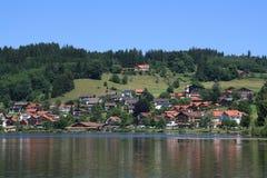 Hopfen ve, Alemania, 2009 ywar imágenes de archivo libres de regalías