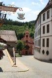 Hopfen am Widzii, Niemcy, ywar 2009 zdjęcia royalty free