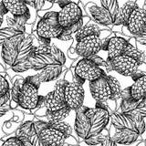 Hopfennahtloses Muster Schwarze Handgezeichnetes künstlerisches Bierhopfen Lizenzfreie Stockfotografie