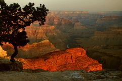 Hopi Point Dawn, Grand Canyon. Dawn light in the Grand Canyon, captured from Hopi Point in Grand Canyon National Park, Arizona Stock Image